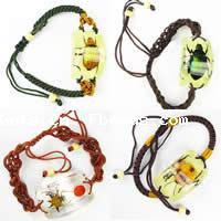 Dried Insect Specimen Bracelets