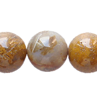 Petrified Wood Bead