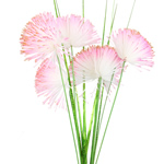 Artificial Flower Home Decoration, PE Foam, gold powder, pink, 8x12cm, 80x50cm, Sold By PC