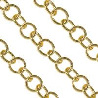 Iron Circle Chain