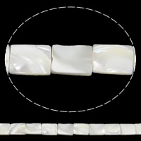 Seashell Beads, Natural Seashell, Rectangle, white, 10x14x3mm, Hole:Approx 1mm, Length:Approx 15.7 Inch, 29PCs/Strand, Sold By Strand