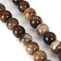 Petrified Wood Bead